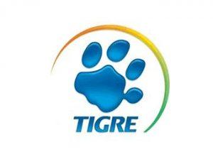 Buro Steel Framing Tigre